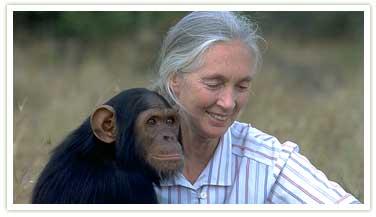 Washington State University - Jane Goodall